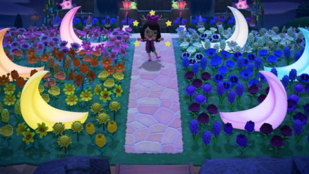 Île étoilée rose