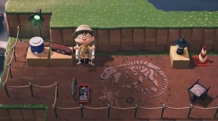 Fossile au sol