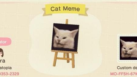 Mème : chat