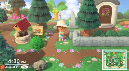 Chemin terre et fleurs