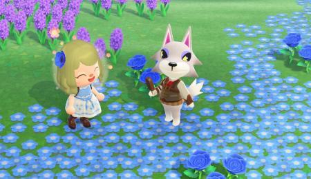 Chemin fleurs (divers coloris)